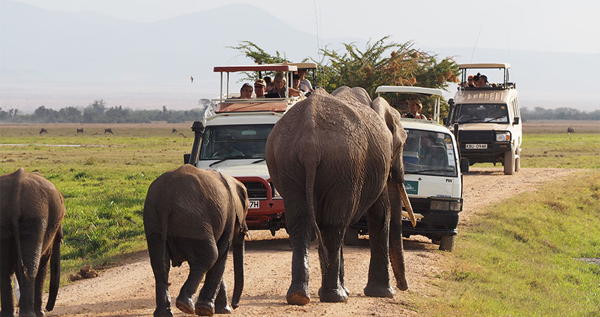 3 Days Kenya budget safari Amboseli
