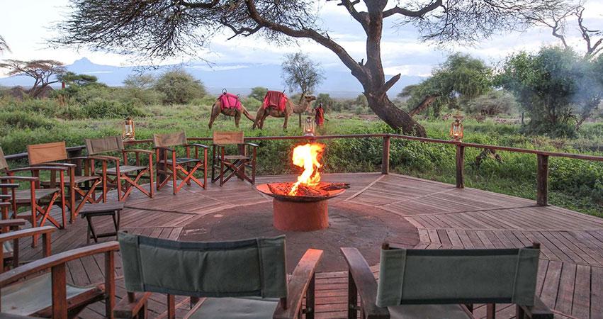 5 Days Kenya Lodge Safari Masai Mara / Amboseli