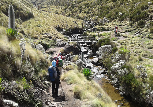 6 Days Mount Kenya Climbing Adventure - Sirimon Route Down Chogoria Route