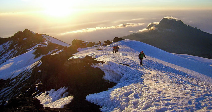 8 Days Mount Kilimanjaro Climb - Lemosho Route