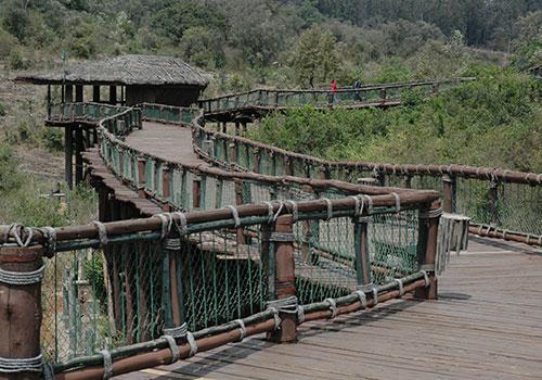 Nairobi National Park / Nairobi Safari Walk & Animal Orphanage - Minimum 2 Pax